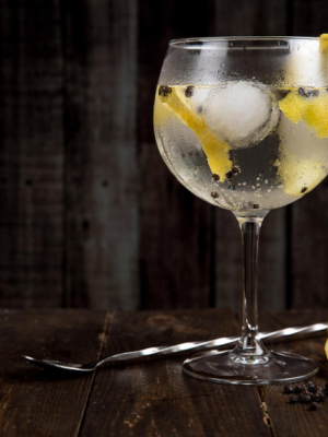 ginsmagning -eksklusiv gin - foto